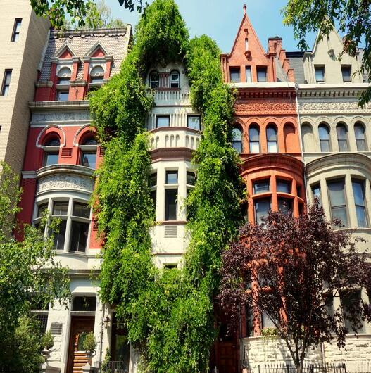 2019美国房产资讯--住宅类型:带你了解美国房产各种类型